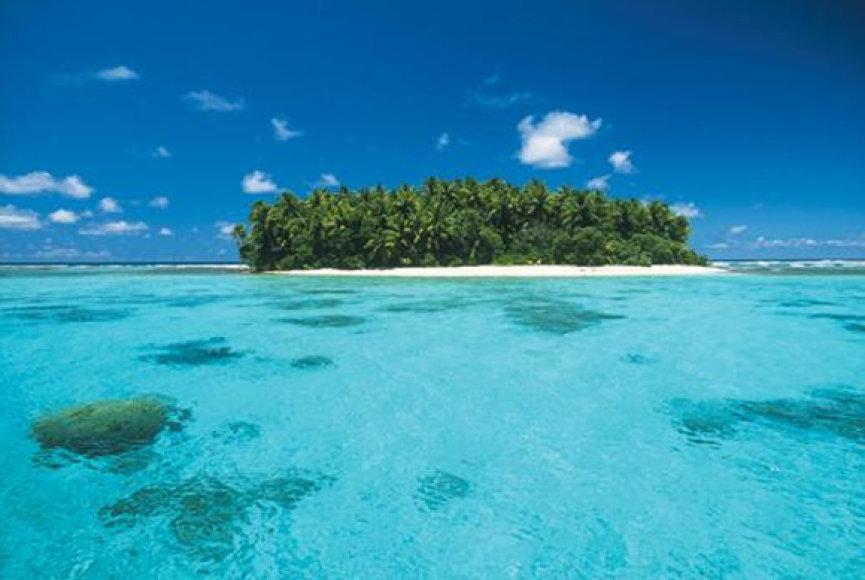 Maršalo salas supantys vandenys tapo didžiausiu planetoje ryklių draustiniu