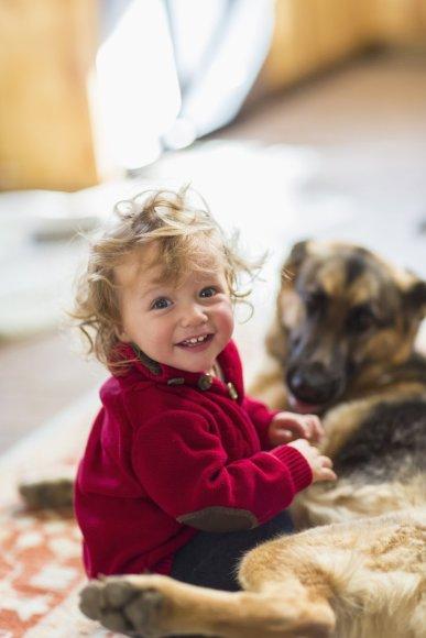 Mažylis su šunimi