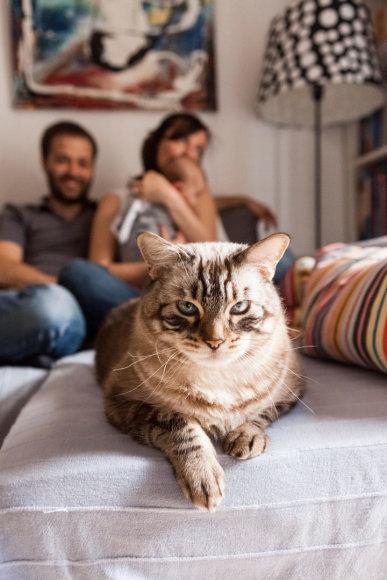 Šeima namuose