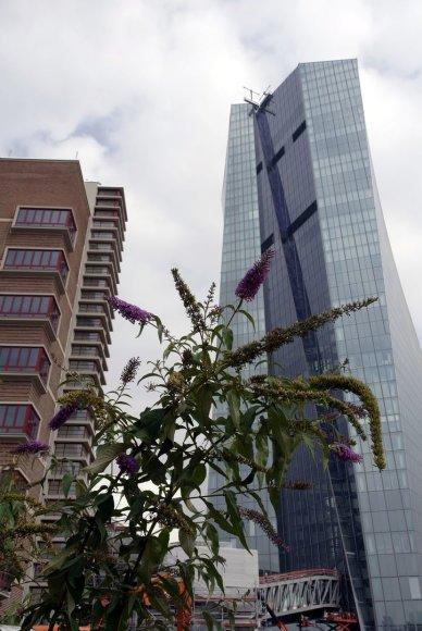 Naujas ECB pastatas dygsta buvusioje Frankfurto turgavietėje