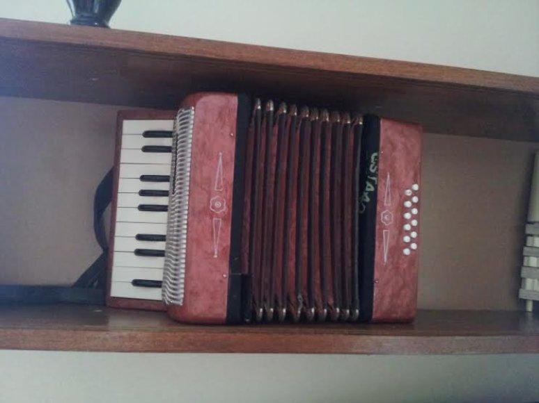 Tautiniai muzikos instrumentai