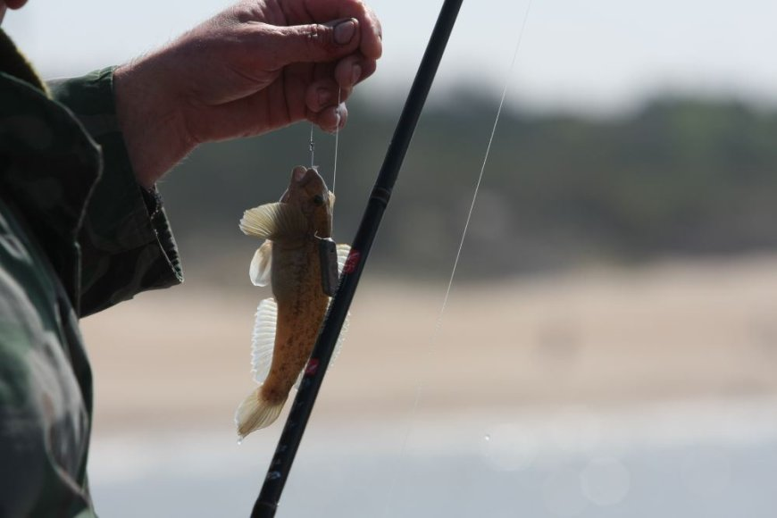 Palangoje žvejai traukia grundalus