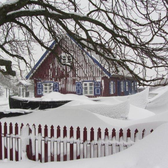 Sniegas užklojo tykiąją Nidą