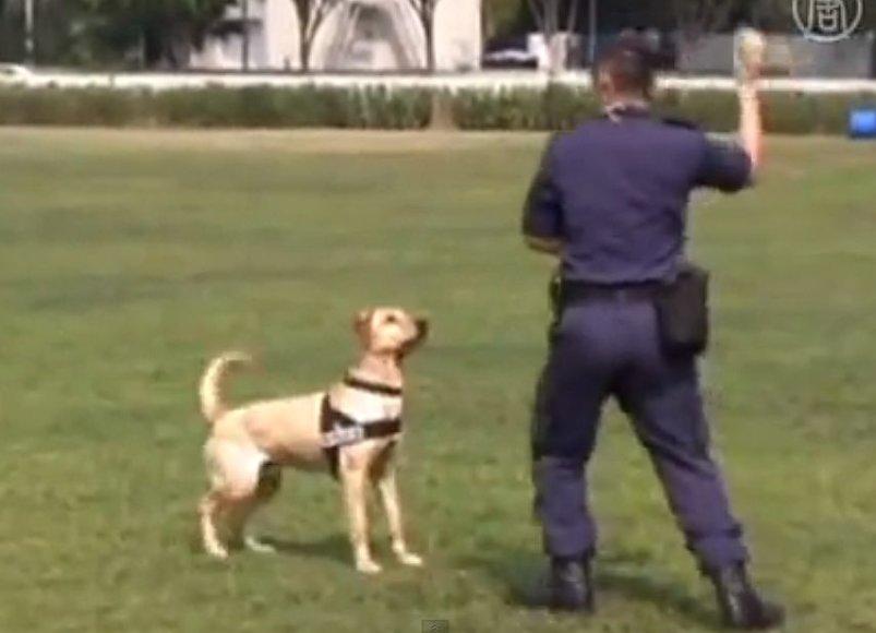 Policininkas ir šuo
