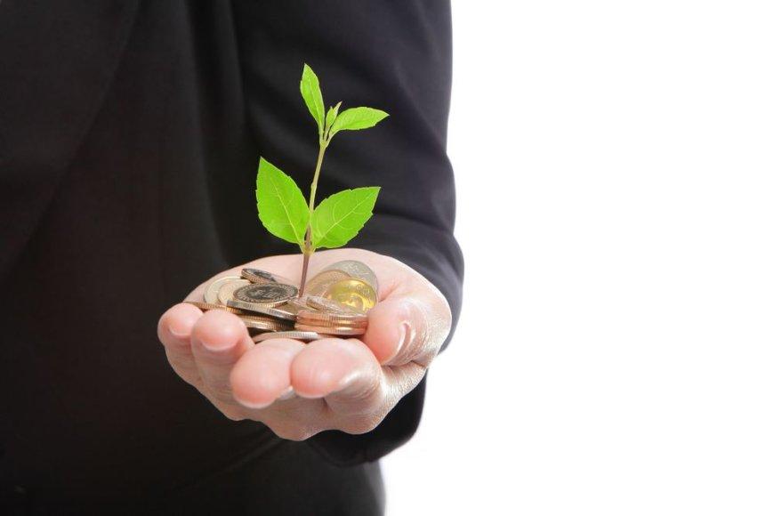 Ekologiškas verslas
