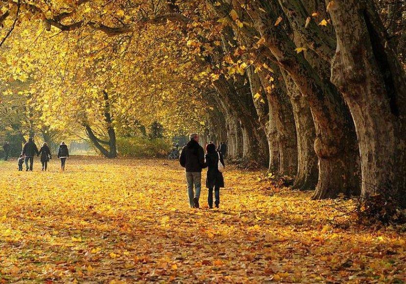 Vaikščiojimas rudenį išsklaido blogą nuotaiką