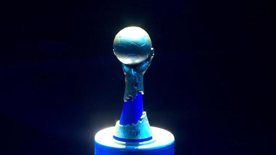 Pasaulio rankinio taurė