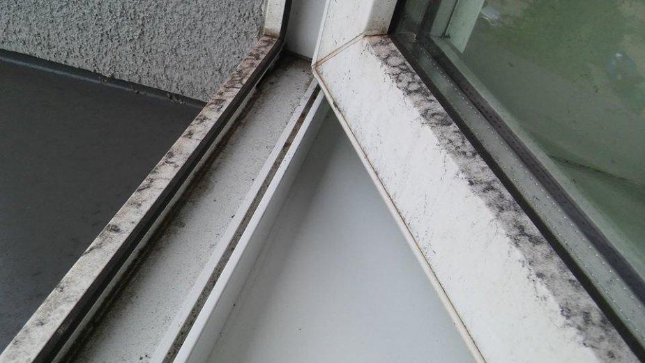 Geležies rūdos dulkės nusėdusios ant gyventojų langų.