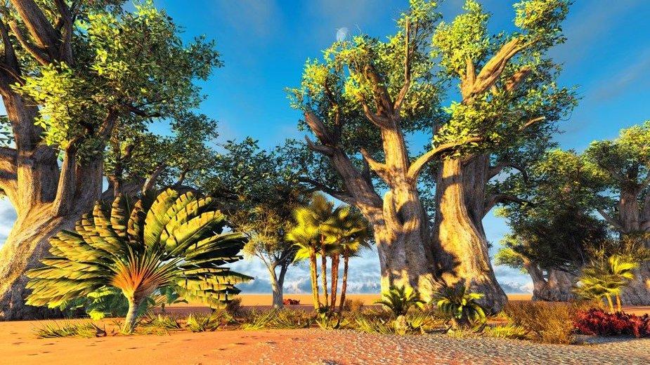 """Madagaskaro ravenala dar vadinamas """"keliautojų medžiu"""""""