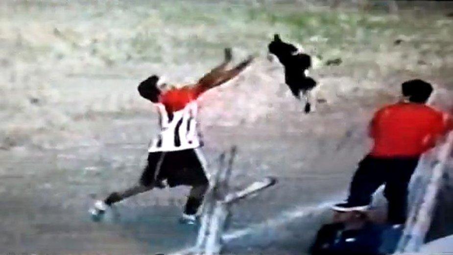 Futbolininkas grubiai išmetė šunį