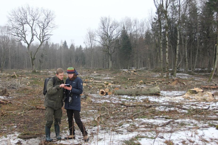Lietuvos gamtos fondo nuotr. /Gamtosaugos specialistai Alvydas Gintaras ir Adelė Markevičiūtė vertina iškirstą teritoriją