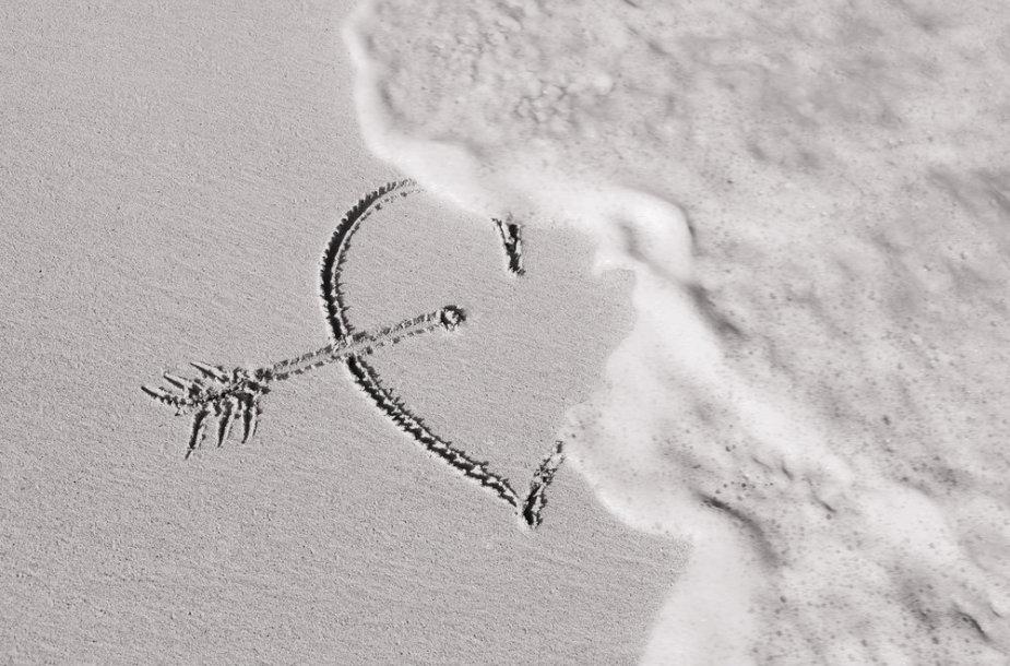 Priblėsusi meilė