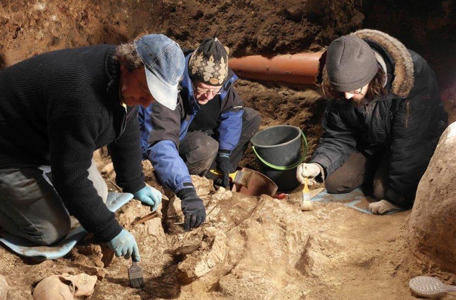 LNM archeologai (iš kairės G.Grižas, V.Steponaitis, G.Petrauskas)