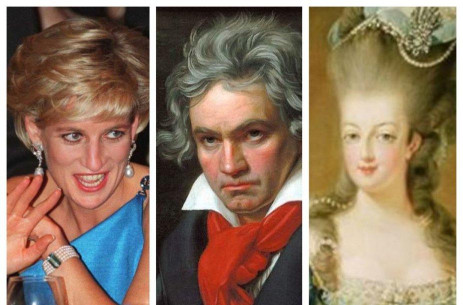 Princesė Diana, Bethovenas ir Marija Antuanetė