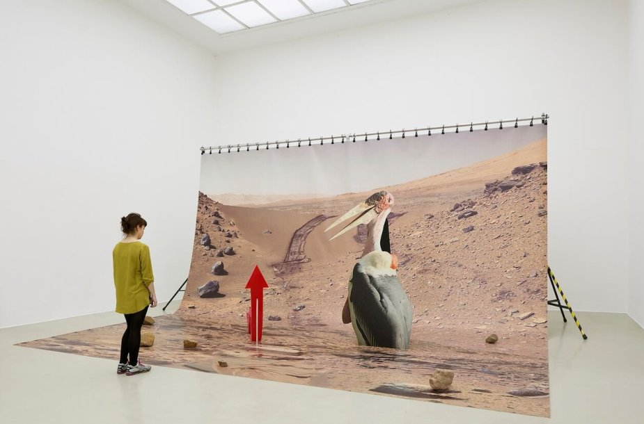 "Katja Novitskova ""Mars installation"""