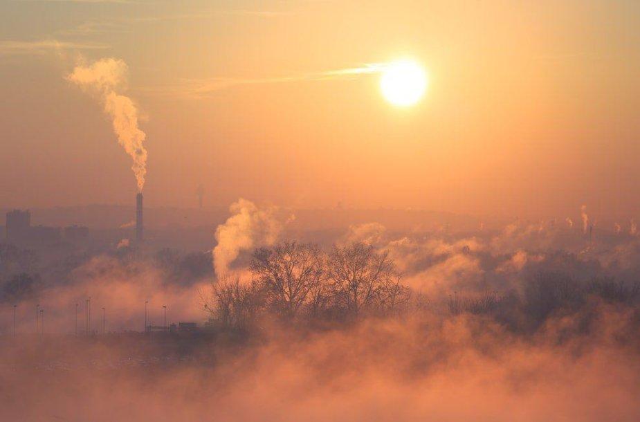 Smogas Lenkijoje