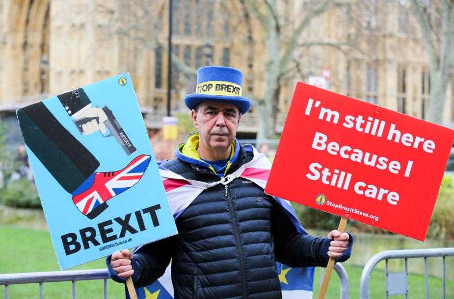 """Protestuotojas prieš """"Brexit"""""""