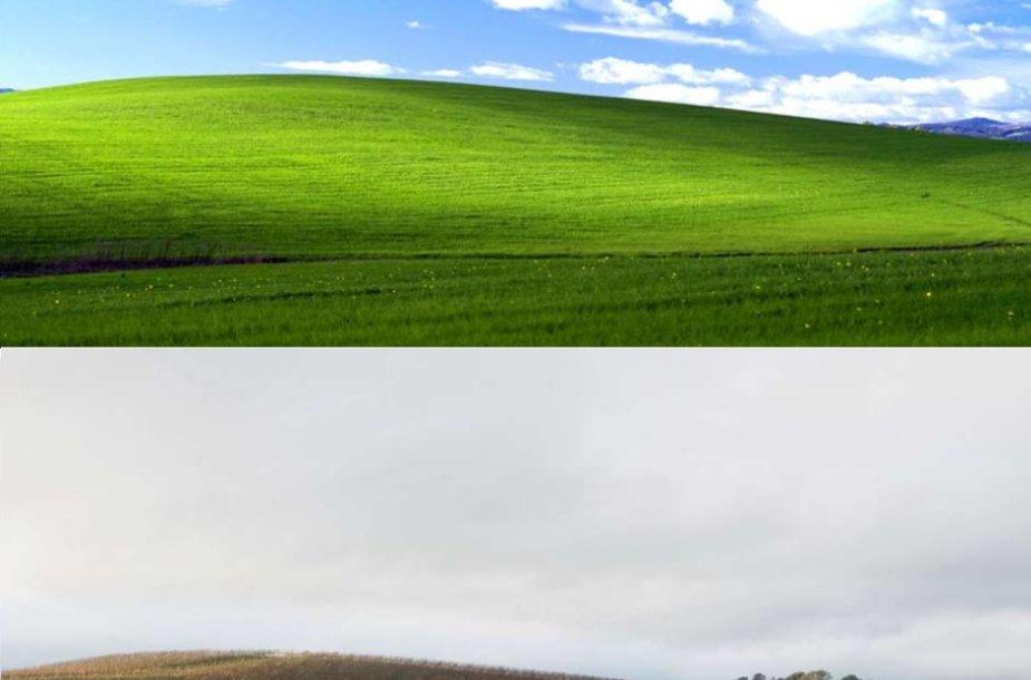 Montažo viršuje - Windows XP ekrano užsklanda, apačioje - vynuogynu virtusi kalva
