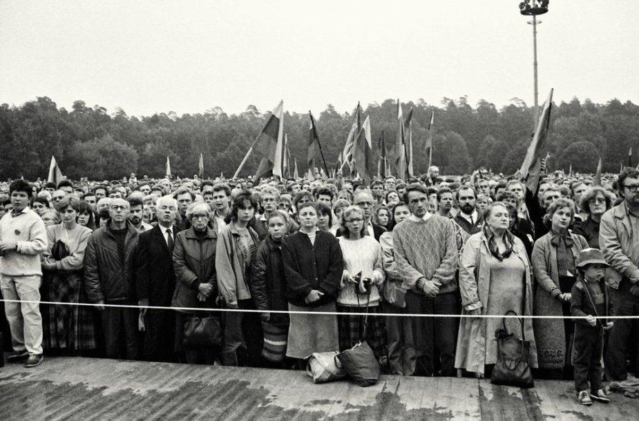 1988 m. rugpjūčio 23-oji, Sąjūdžio mitingas Vingio parke