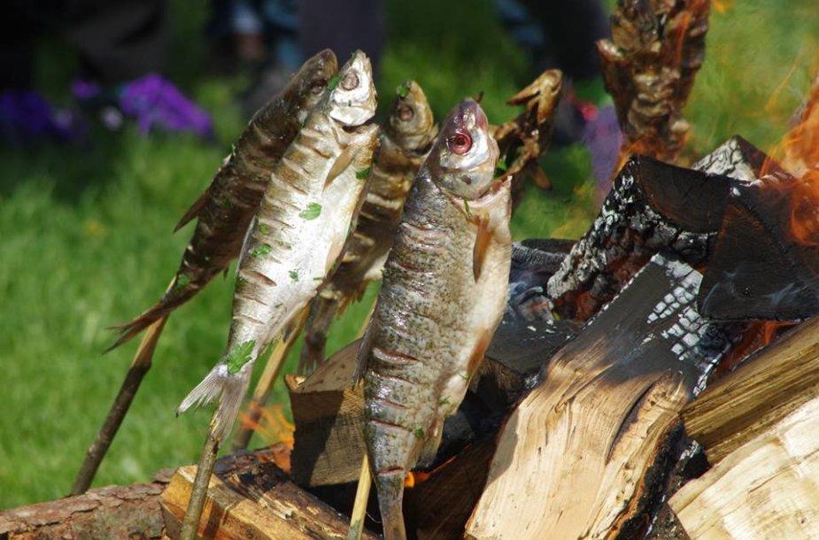 Nidoje balandžio 30-ąją visi kviečiami paragauti keptų žiobrių.