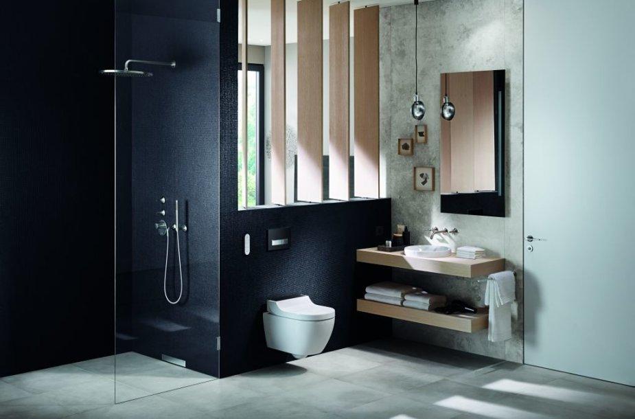 Vonios kambario tendencijos