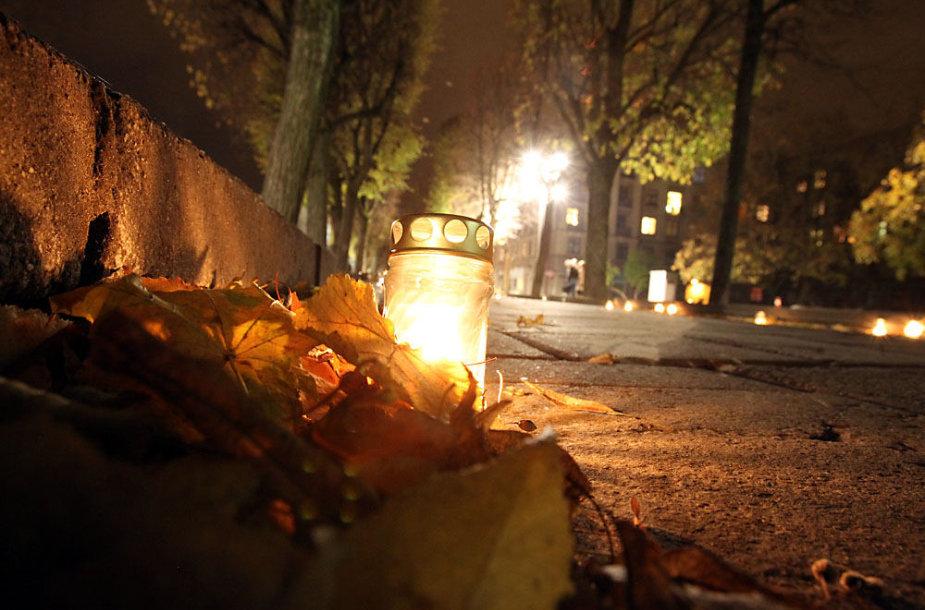 Žvakutės Laisvės alėjoje