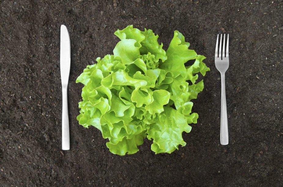 Ekologiškas maistas