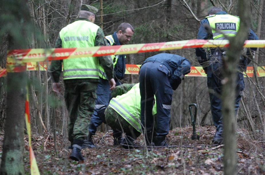 Įvykio vietoje miške, Vilniuje