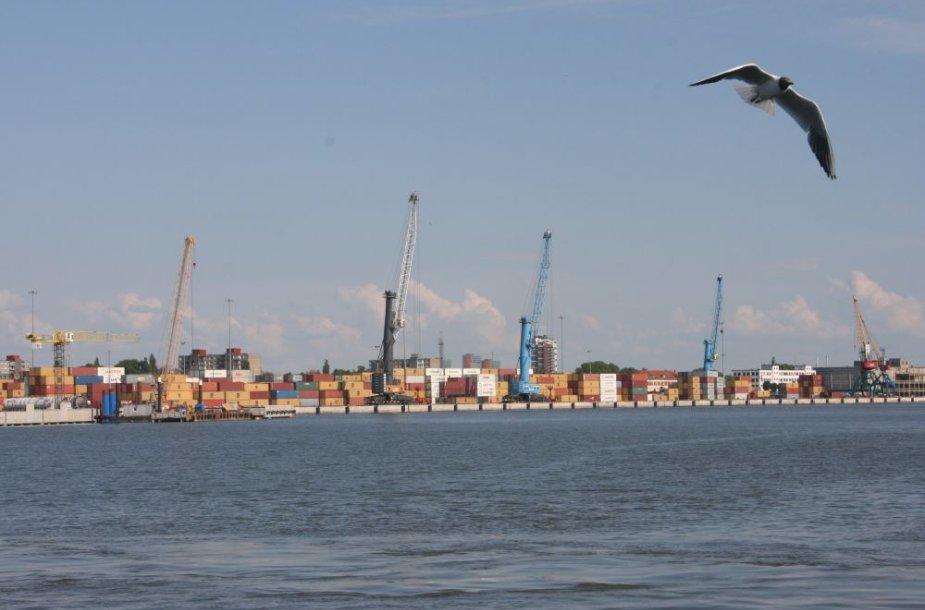 Klaipėdos uoste per pusantrų metų ketinama iškelti, išvalyti užterštą gruntą iš dokų ir nugabenti į specialią aikštelę.