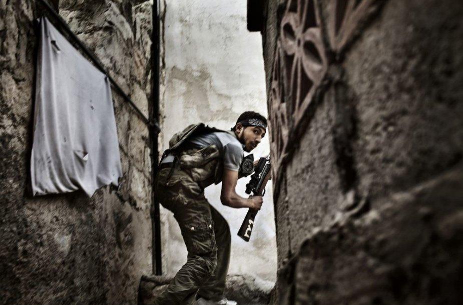 Sirijos karys