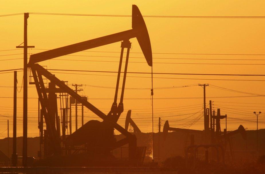 JAV netrukus gali tapti didžiausia naftos gavėja pasaulyje