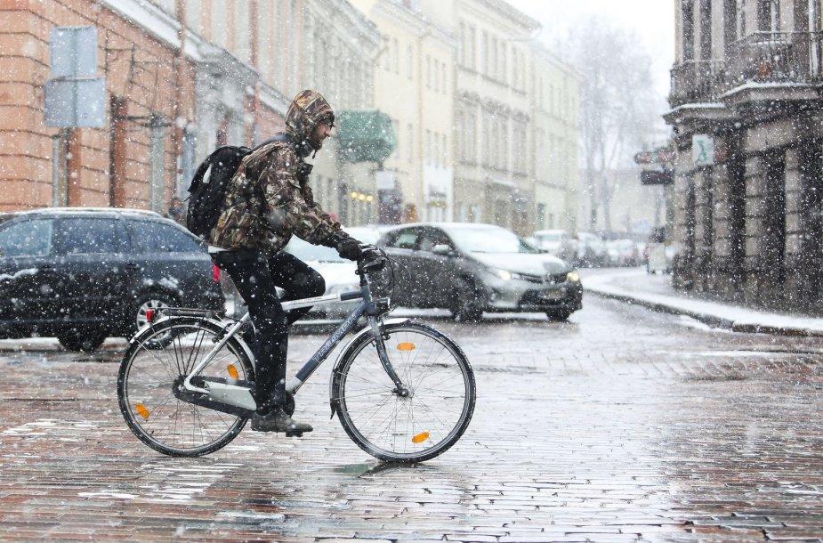 Sekmadienį Vilniuje - balta, balta. Nosis kutena žvarbus vėjas.