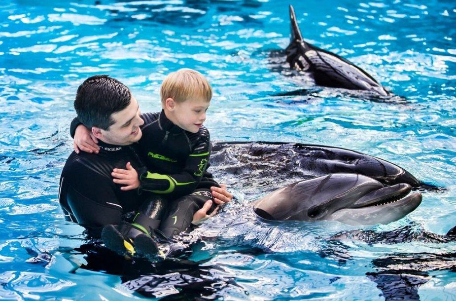 Delfinų terapija sergantiems vaikams – itin veiksminga