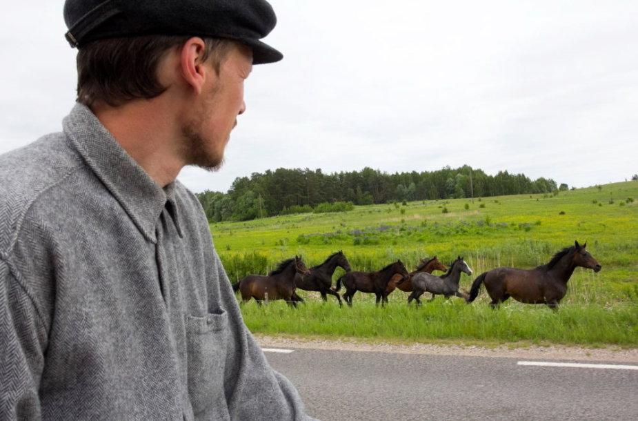 Su žemaitukais bėga pakeliui besiganantys žirgai
