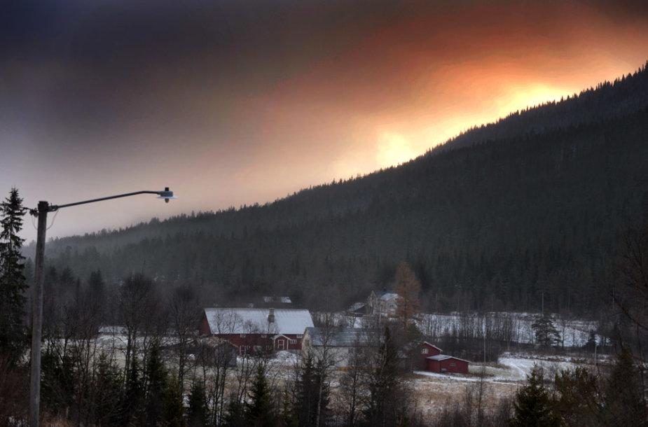 Laimingas šunų gyvenimas Norvegijoje