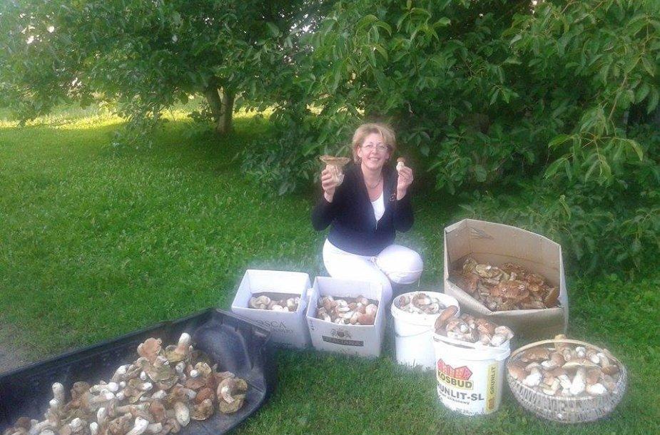 Skaitytojų laimikis – 107 kg grybų  2014 m. rugpjūčio 26 d.