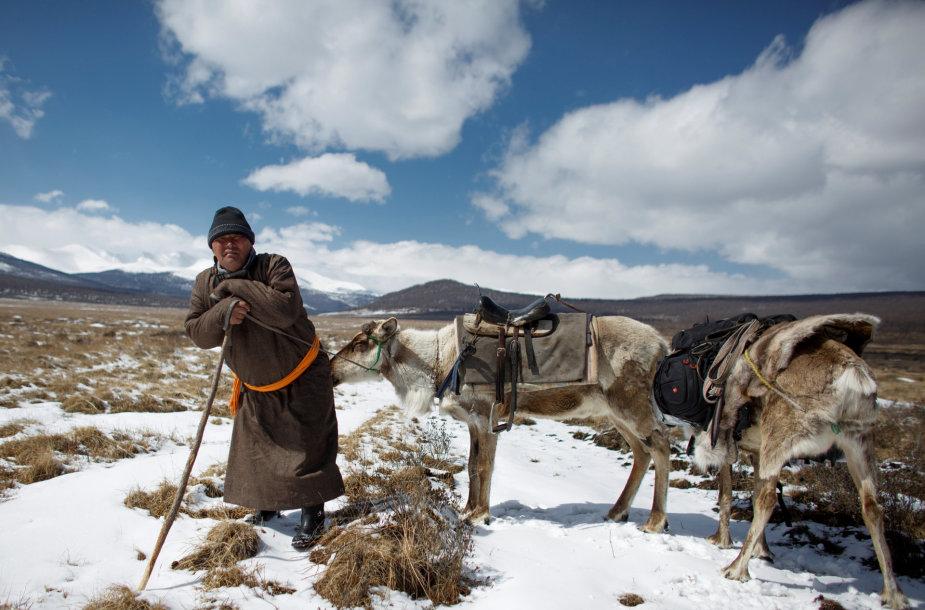 Elnių piemenys Mongolijoje