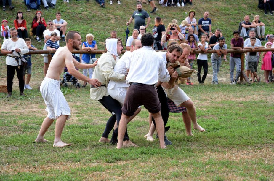 Viduramžių festivalis