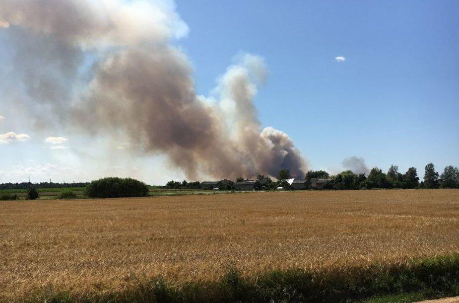 Kauno rajone degė 200 hektarų javų laukas