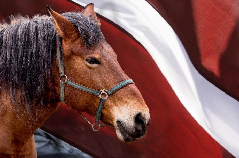 """Kodėl lietuviai latvius vadina """"žirgo galvomis"""""""