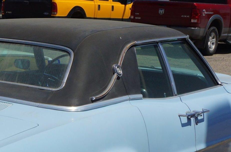 Landau juostelėmis papuošti automobiliai