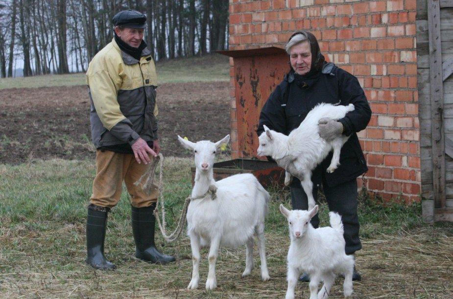 Bronislovas ir Viktorija Rimkevičiai Ožkos metus sutinka su tuzinu ožkų
