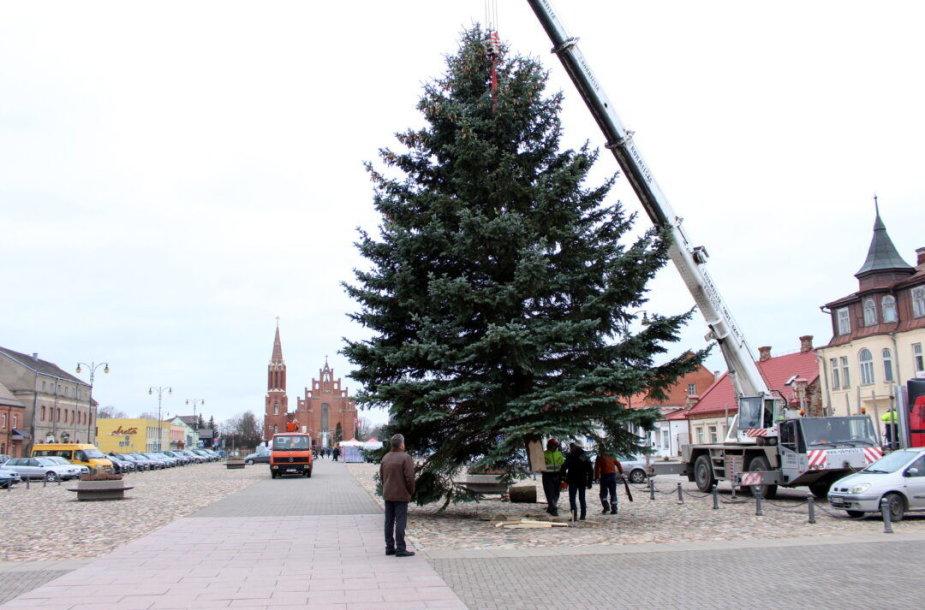 Kalėdų eglė Rokiškyje