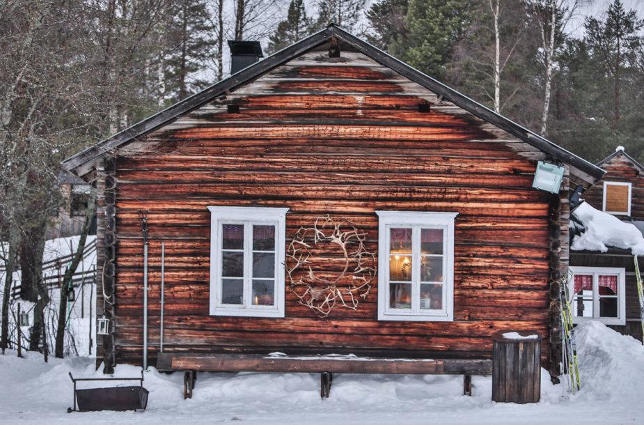 Ylläs savivaldybėje galima rasti kelias elnių fermas, kuriose šiuos įstabius raguočius galima fotografuoti, paglostyti ir pasivažinėti jų traukiamomis rogėmis.