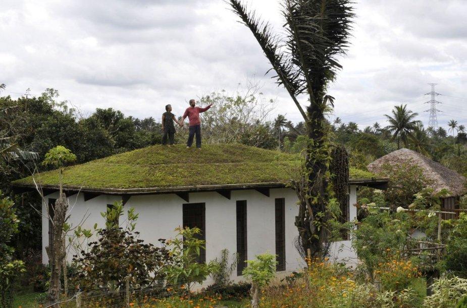 Ekologiškas namas