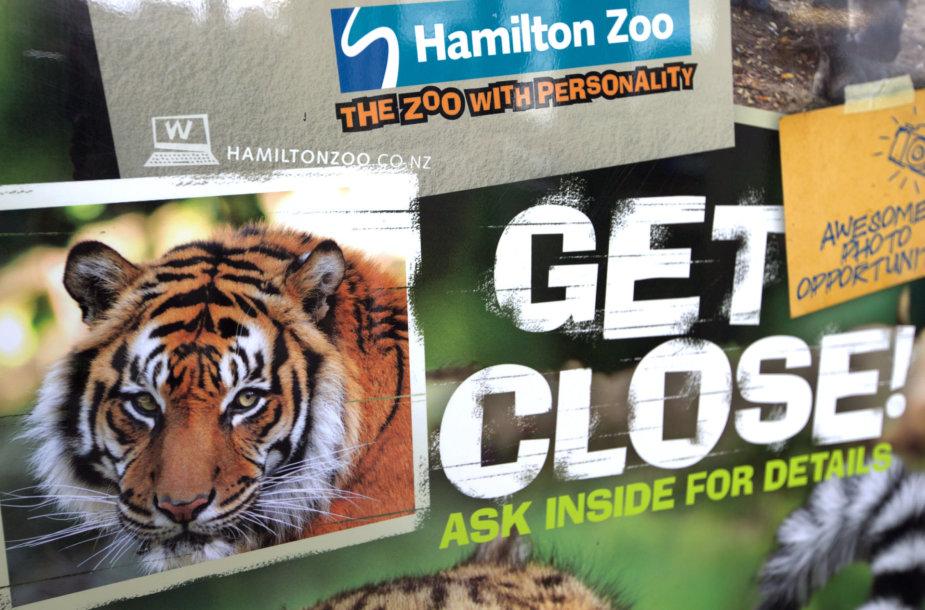 Reklaminis plakatas Hamiltono zoologijos sode