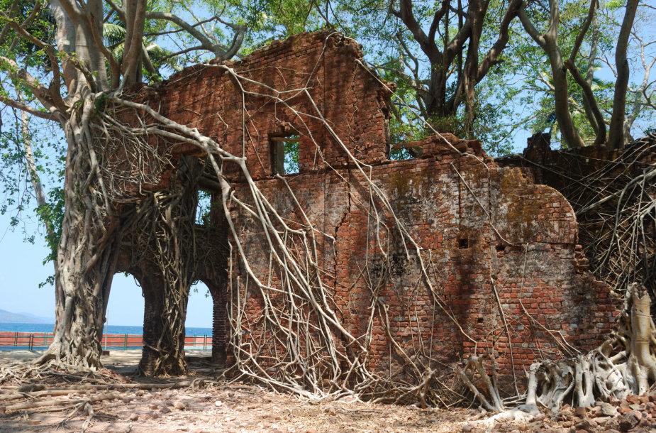 Gamtos iš žmonių atkovota Roso sala Indijos vandenyne