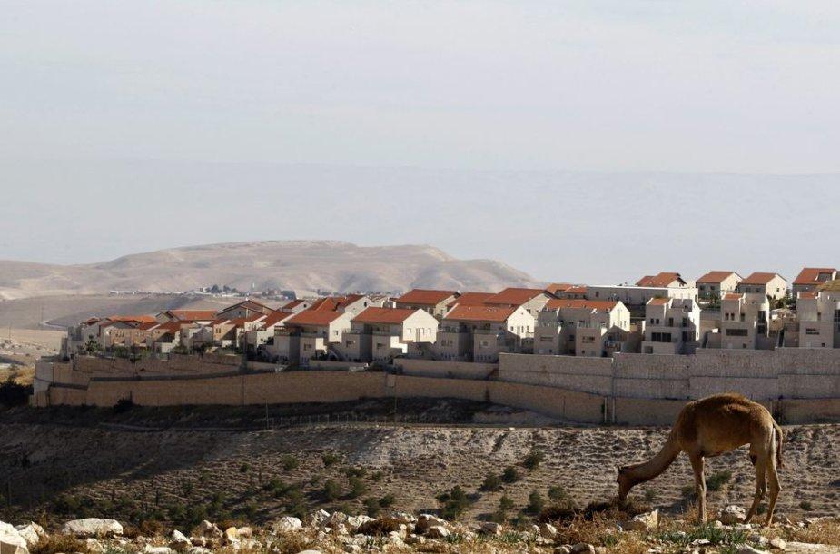 Vakarų Europa priekaištauja Izraeliui dėl naujakurių gyvenviečių plėtros