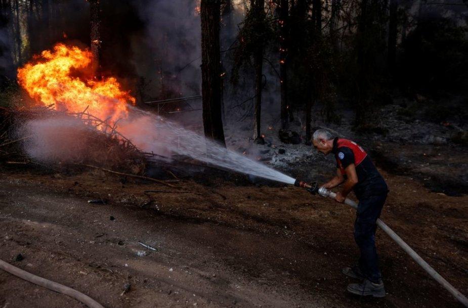 Miško gaisras Turkijoje