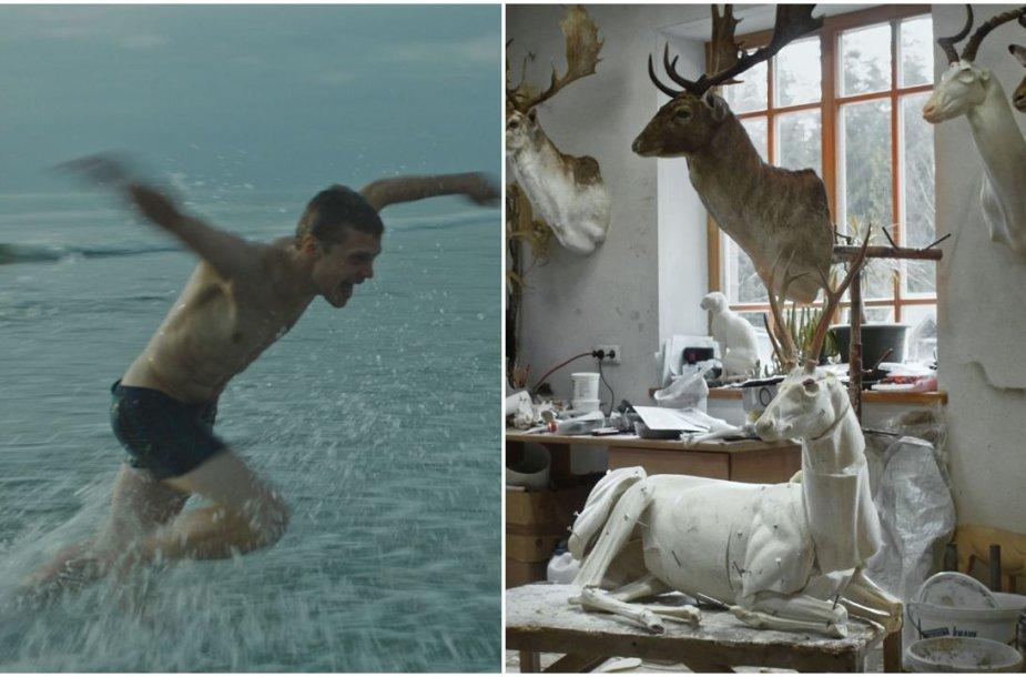 """Kadrai iš filmų """"Išgyventi vasarą"""" ir """"Animus Animalis (istorija apie žmones, žvėris ir daiktus)"""""""